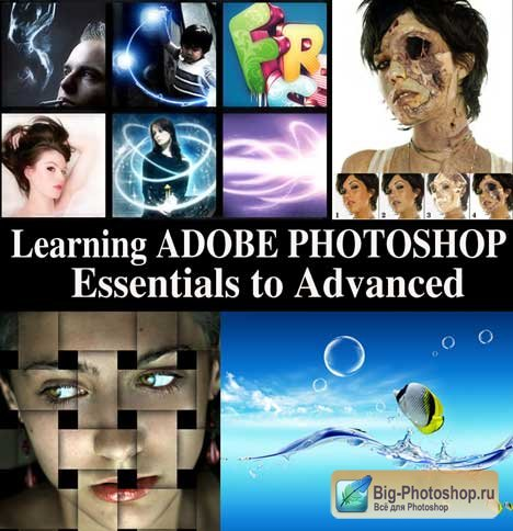 Learning Adobe Photoshop from Essential to Advance Level