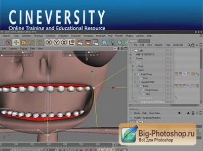 Cineversity (Cinema 4D): Lessons on Character Rigging & Constraints