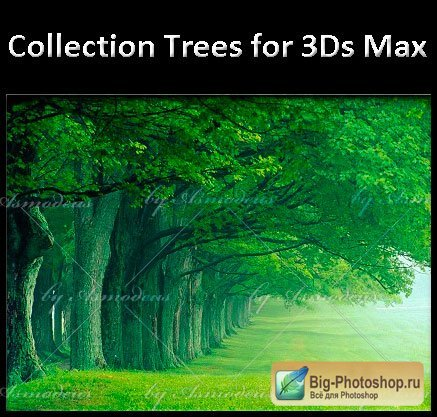 3d colection trees for 3ds max max vray textures 155 mb