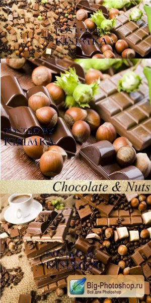 Stock Photo: Chocolate & Nuts