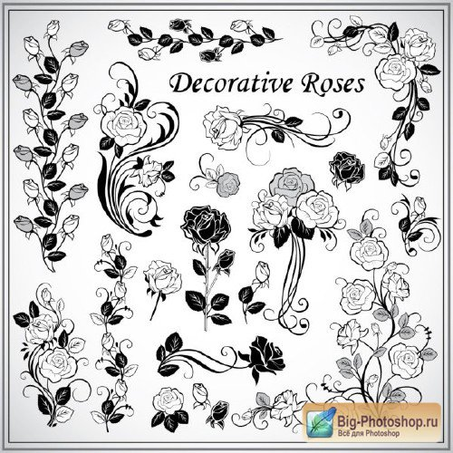 Set of decorative roses
