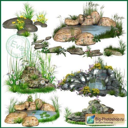 растения клипарт: