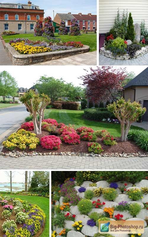 Цветы во дворе дизайн фото