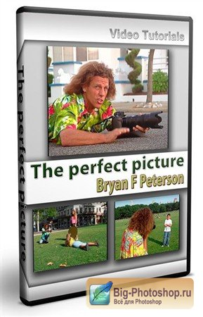The perfect picture /Bryan F Peterson/