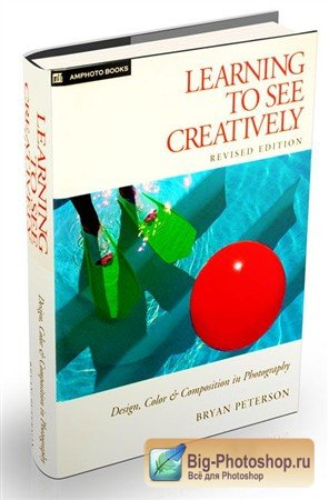 Learning to See Creatively: Design, Color & Composition in Photography