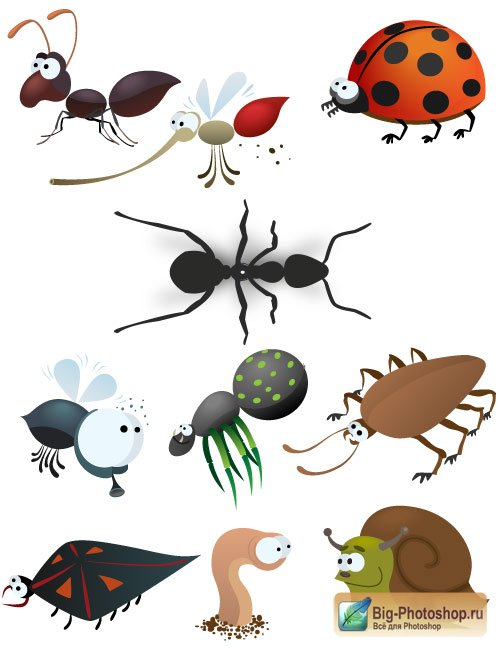 Animals bg vector