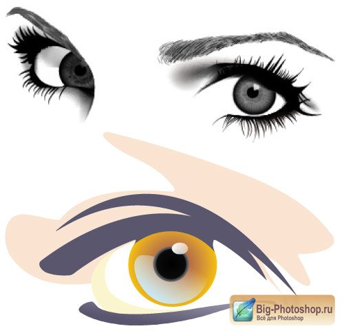 Ladies eyes vector