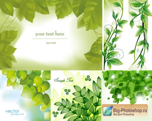 Green leaves summer vector