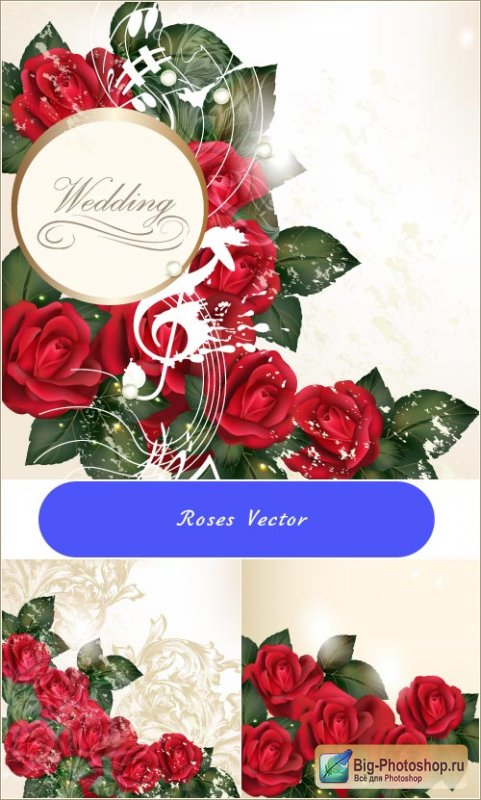 Background wedding red roses (Vector)