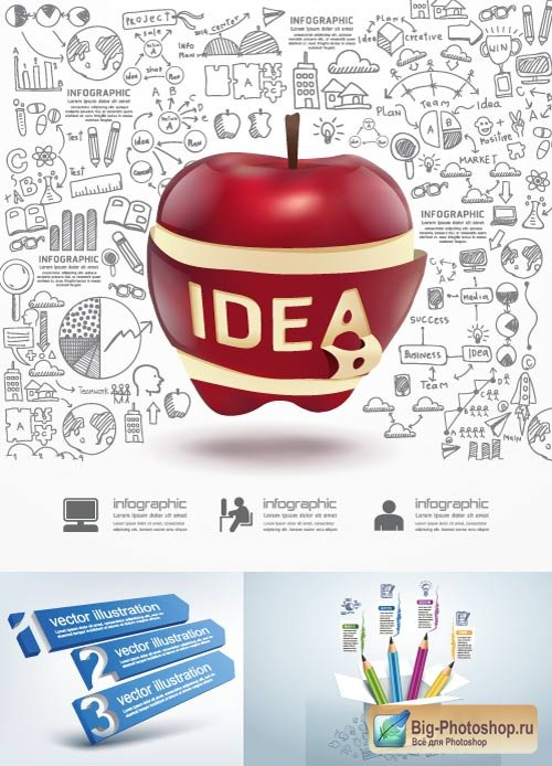 Business infographics with apple vector