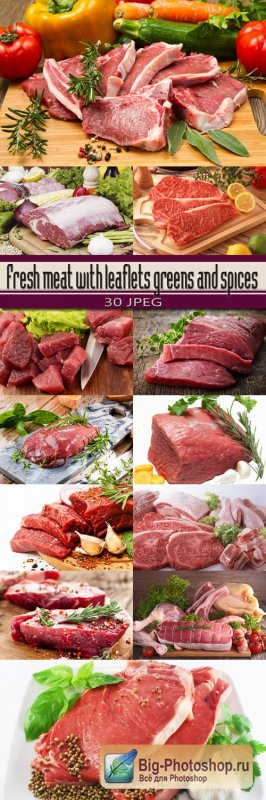 Fresh meat with leaflets greens and spices