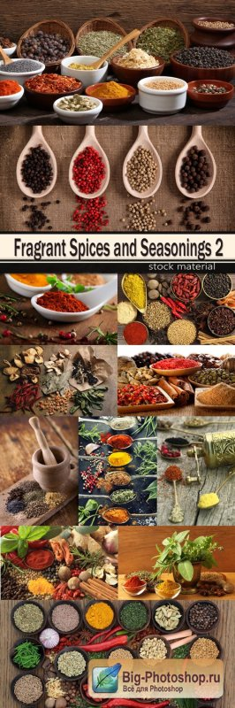 Fragrant Spices and Seasonings 2