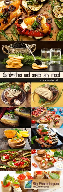Sandwiches and snack any mood