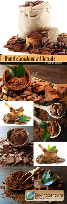 Aromatic Cocoa beans and Chocolate on wooden background