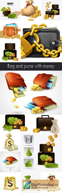 Bag and purse with money