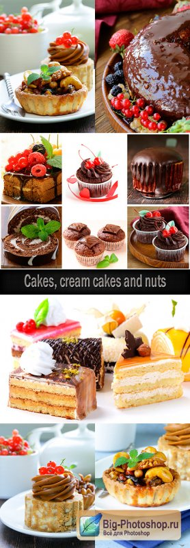 Cakes, cream cakes and nuts