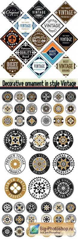 Decorative ornament in style Vintage