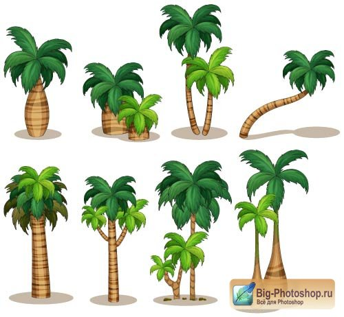 High animation juicy green palm tree (Vector)