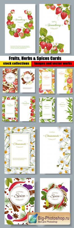 Fruits, Herbs & Spices Cards Vector