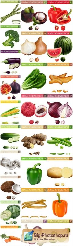 Realistic Vegetables Fruits Set