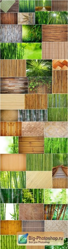Bamboo Collection - 50xUHQ JPEG