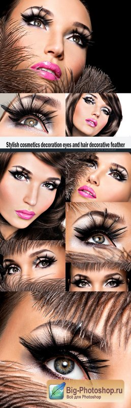 Stylish cosmetics decoration eyes and hair decorative feather