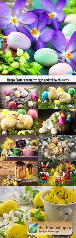 Happy Easter decorative eggs and yellow chickens