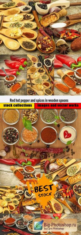 Red hot pepper and spices in wooden spoons