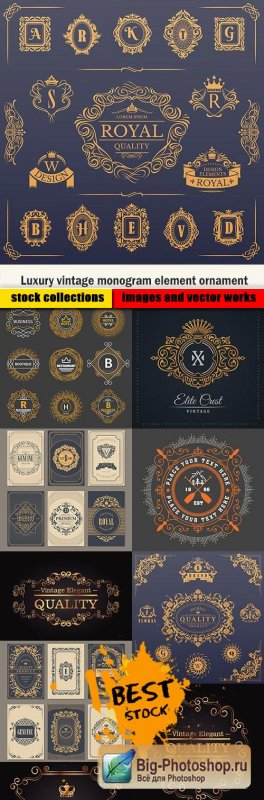 Luxury vintage monogram element ornament