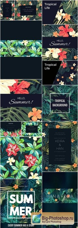 Exotic Tropical Backgrounds