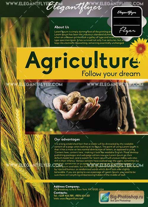 Agriculture Corporate V19 Flyer Templates