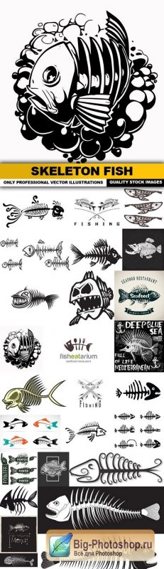 Skeleton Fish Bone Fish - 25 Vector