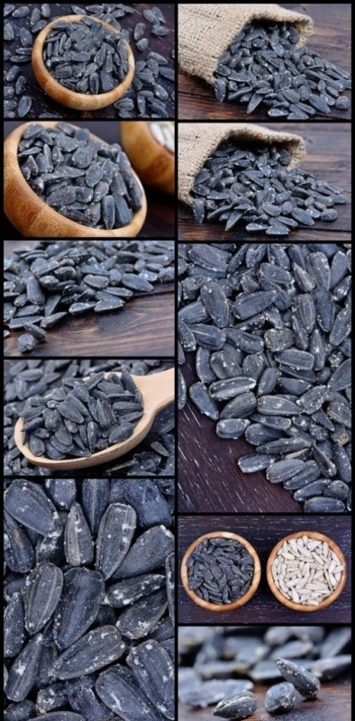 Background of black sunflower seeds 10X JPEG