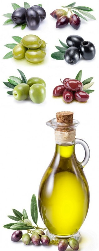 Olive fruit and olive leaves 7X JPEG