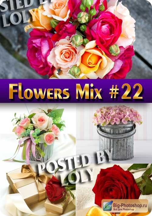 Flowers Mix #22 - Stock Photo