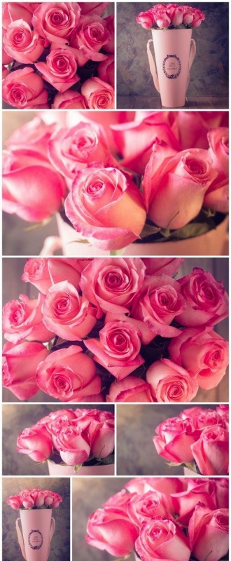 Valentines day or Mother day background with pink roses 8X JPEG
