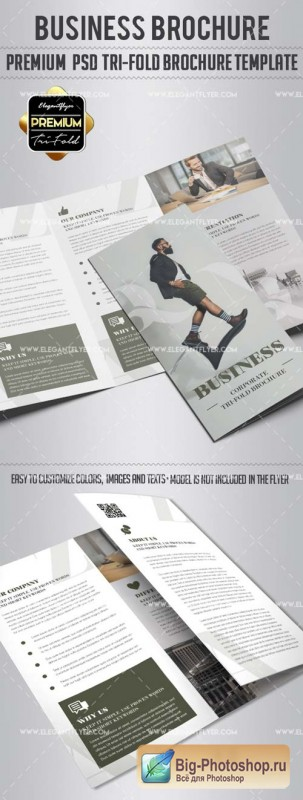 Business V17 2018 Tri-Fold Brochure PSD Template